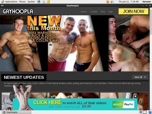 Gay Hoopla Day Trial Membership